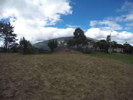 LOTE CHACHATOY 1.125 MTS2