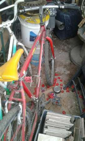 Bicicleta oxea