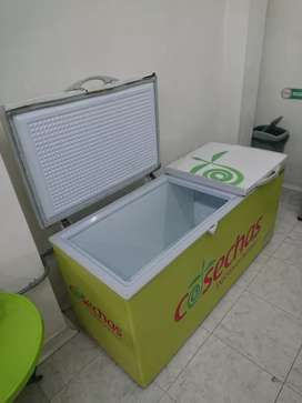 Congelador industrial bodeguero