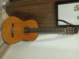 Se vende guitarra freedom CG 800S en buen estado