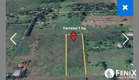 TF460 1 Ha EN GARUPA A 50 M DE COLECTORA