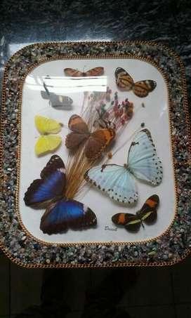 Cuadro con mariposas secas y piedras preciosas