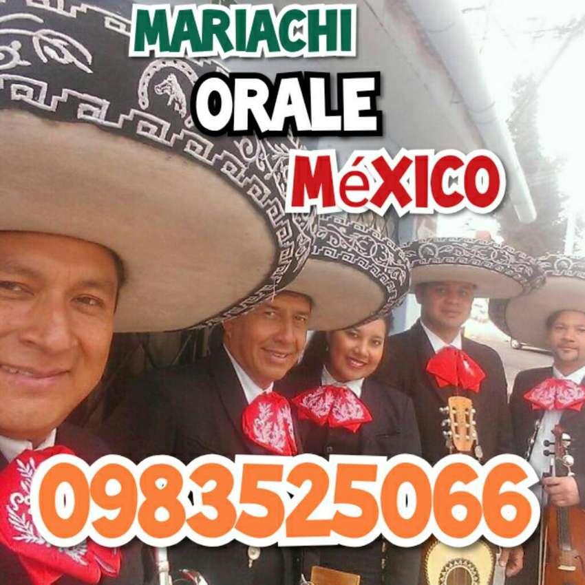 Mariachi Profesional  Orale 0