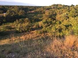 Finca en la Vereda el triunfo, a 10 kilómetros de Neiva sobre la carretera principal, 15 hectáreas.