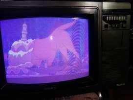 Tv Sony Trinitron Kv-2022an, En Buen Estado Y Funcionando.