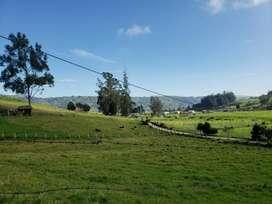 Hermosa hacienda Agrícola Ganadera tipo Quinta con 2 casas amplias y 10 hectáreas de terreno en Nabon parroq. la paz