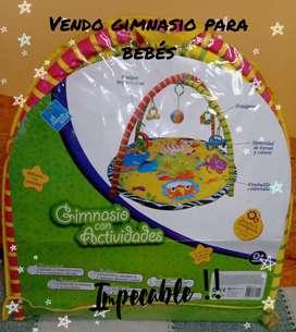Vendo Gimnasio para bebés con accesorios