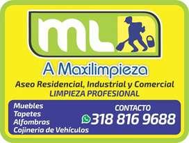 LAVADO DE MUEBLES, COGINERIA Y TAPETES