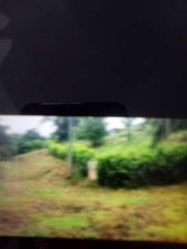 Vendo o permuto lote en condominio de anapoima Cundinamarca
