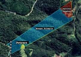 Propiedad Rural 43 Ha.