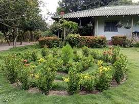 Se vende Finca Agrícola en Polonuevo, 2.25 hectáreas (22.500 M2)