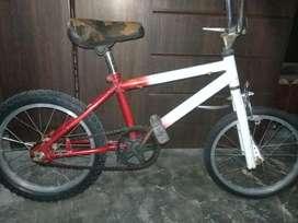 Bici Rod-16