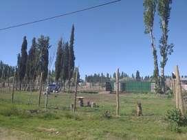 Vendo o permuto terrenos barrio semi privado, zona vista alegre. 3 terrenos de 300 mts2 c/u.