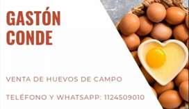 Vendo huevos de campo