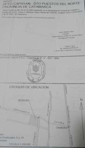 UNICA OPORTUNIDAD - VENTA DE TERRENO EN CATAMARCA EN DPTO CAPAYAN, DTO PUESTOS DEL NORTE