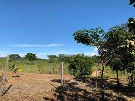 Vendo Lotes Residenciales en la mejor zona de Tarapoto