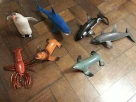 Coleccion Animales Marinos