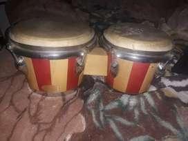 Vendo bongo