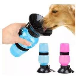 Bebedero Portátil Perros Aqua Dog Termo Para Mascotas