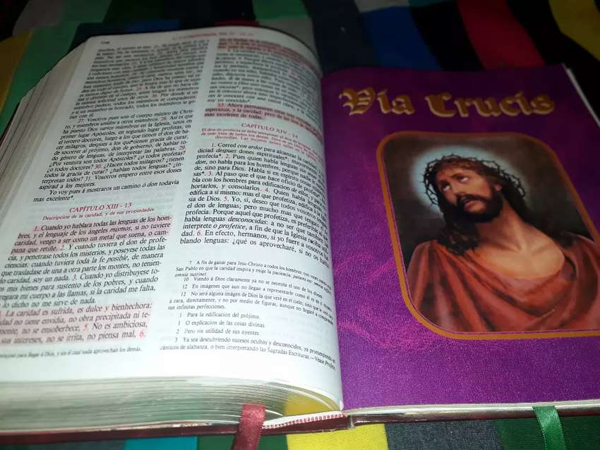 Sagrada Biblia 0