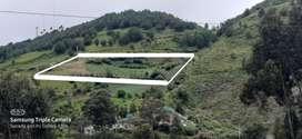 Venta de lote altos de chapal  12.000 m2