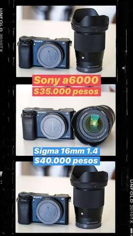Sony a6000 / sigma 16mm 1.4 / sony 18 105 f4