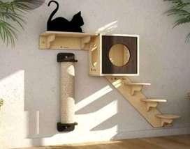 Gym Para tus gatitos