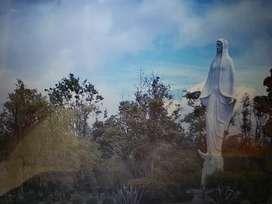 Lotes Jardines La Inmaculada