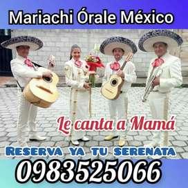 Mariachi Órale México