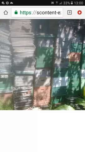 colmenas para abejas