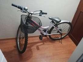 bicicleta oferta adulto giant