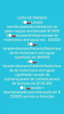 STETIKAR SERVICIO DE LAVADO Y DESINFECCION DE VEHICULOS A DOMICILIO