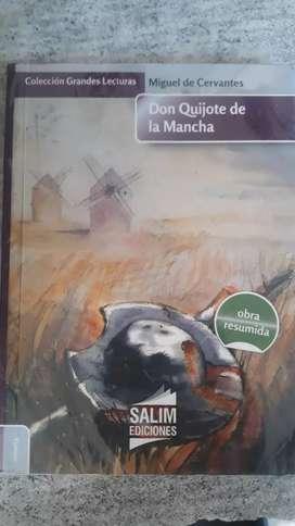 DON QUIJOTE DE LA MANCHA (usado)