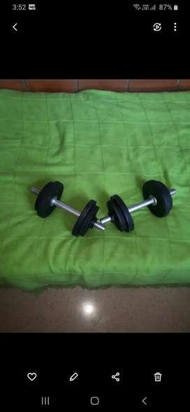 Pesas en hierro 16 kg
