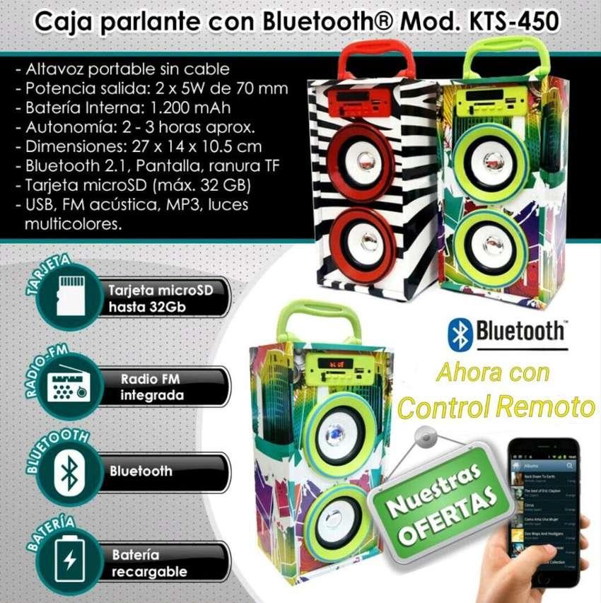 Parlante Portatil Kts450 Usb Fm Mp3 Sd 0