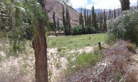 LOTE TERRENO TILCARA CENTRO UNICO 1/2 ha