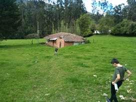 Vendo finca en Sesquilé, Cundinamarca