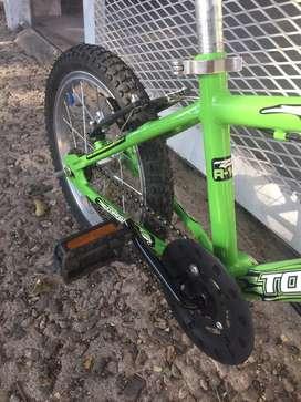 Bici Tomaselli R14