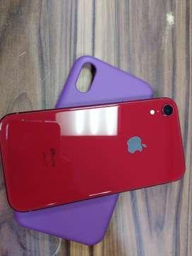 Celular iphone xr rojo como nuevo. 128 gigas de almacenamiento. Solo 2 meses de uso. Negociable.