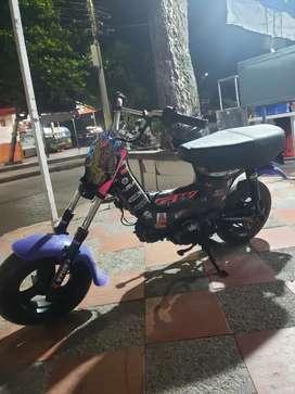 Moto chappy