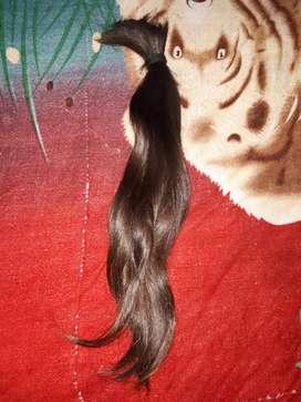 Cola de pelo