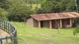 Vendo Parcela de 2800 MT 2 en condominio cerrado con vigilancia,  ubicado en el municipio de Viterbo-Caldas
