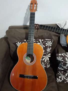Guitarra acuática
