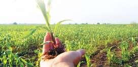 Empresa de Agroquimicos solicita Bodeguero para Lomas de Sargentillo