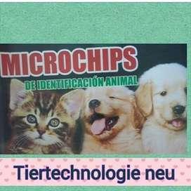 Microchip de Identificacin
