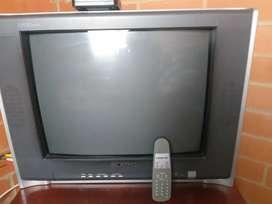 VENDO TV CON CONTROL