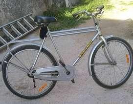Bicicleta Wal Her