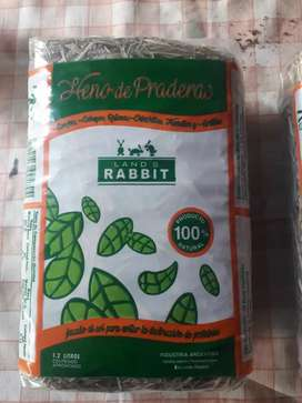 heno de pradera Land's rabbit