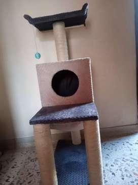 Hermoso gimnasio para Gatos