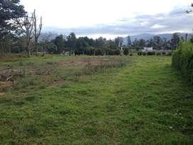 Amplio terreno de venta en Puembo para uso residencial o comercial